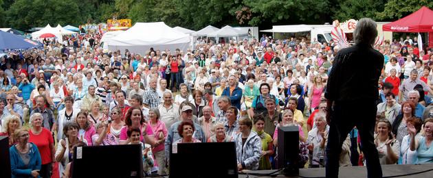 Sänger auf der Bühne beim Schönauer Parkfest mit viel Publikum