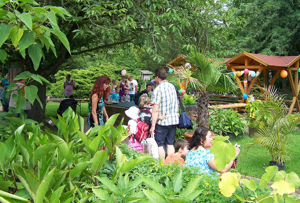 Team-Bildung in der Natur: Workshops im Botanischen Lehrgarten