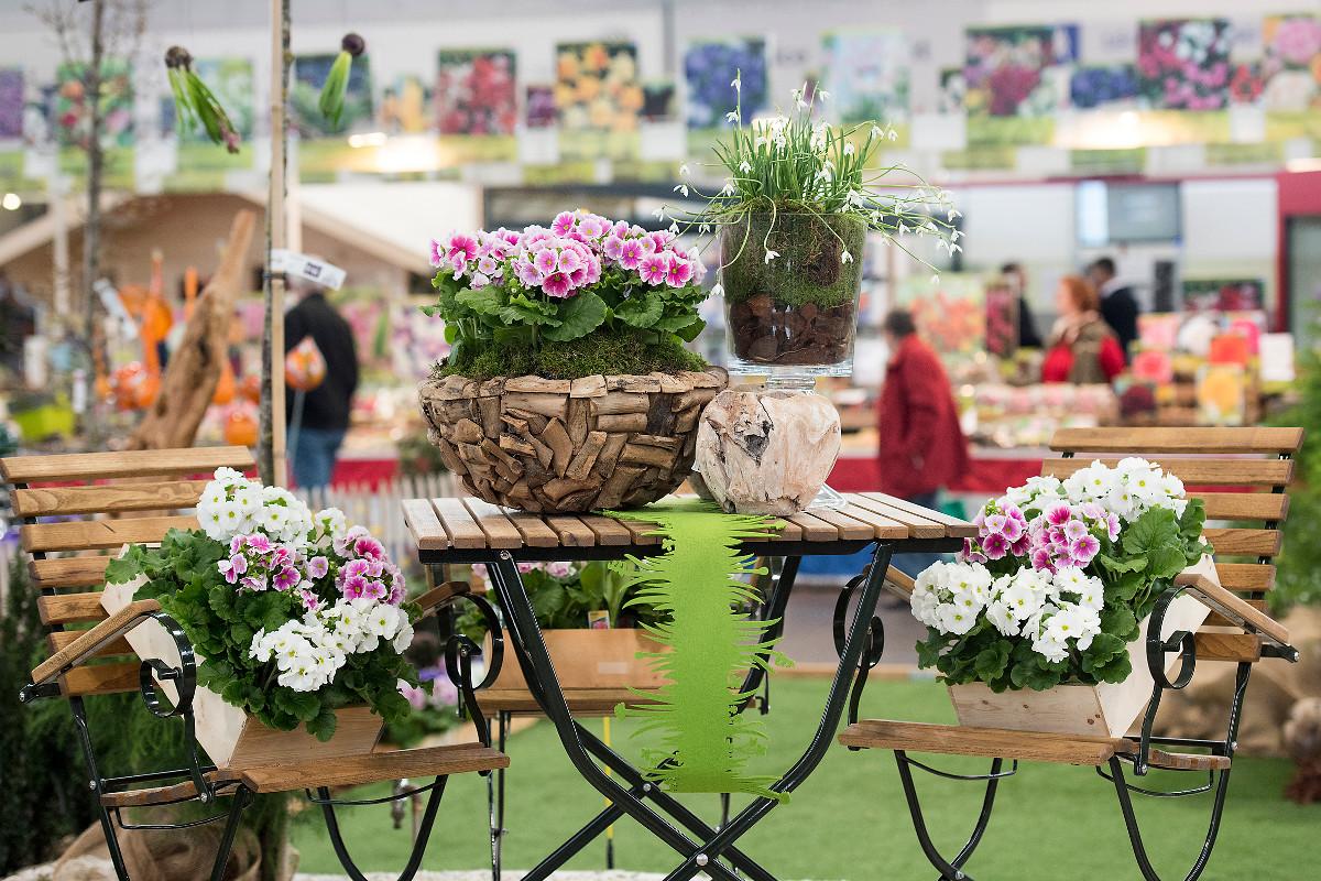 Verschiedene Blumen In Übertöpfen Aus Holz Sind Auf Balkonmöbeln  Arrangiert. Die Haus Garten Freizeit ...